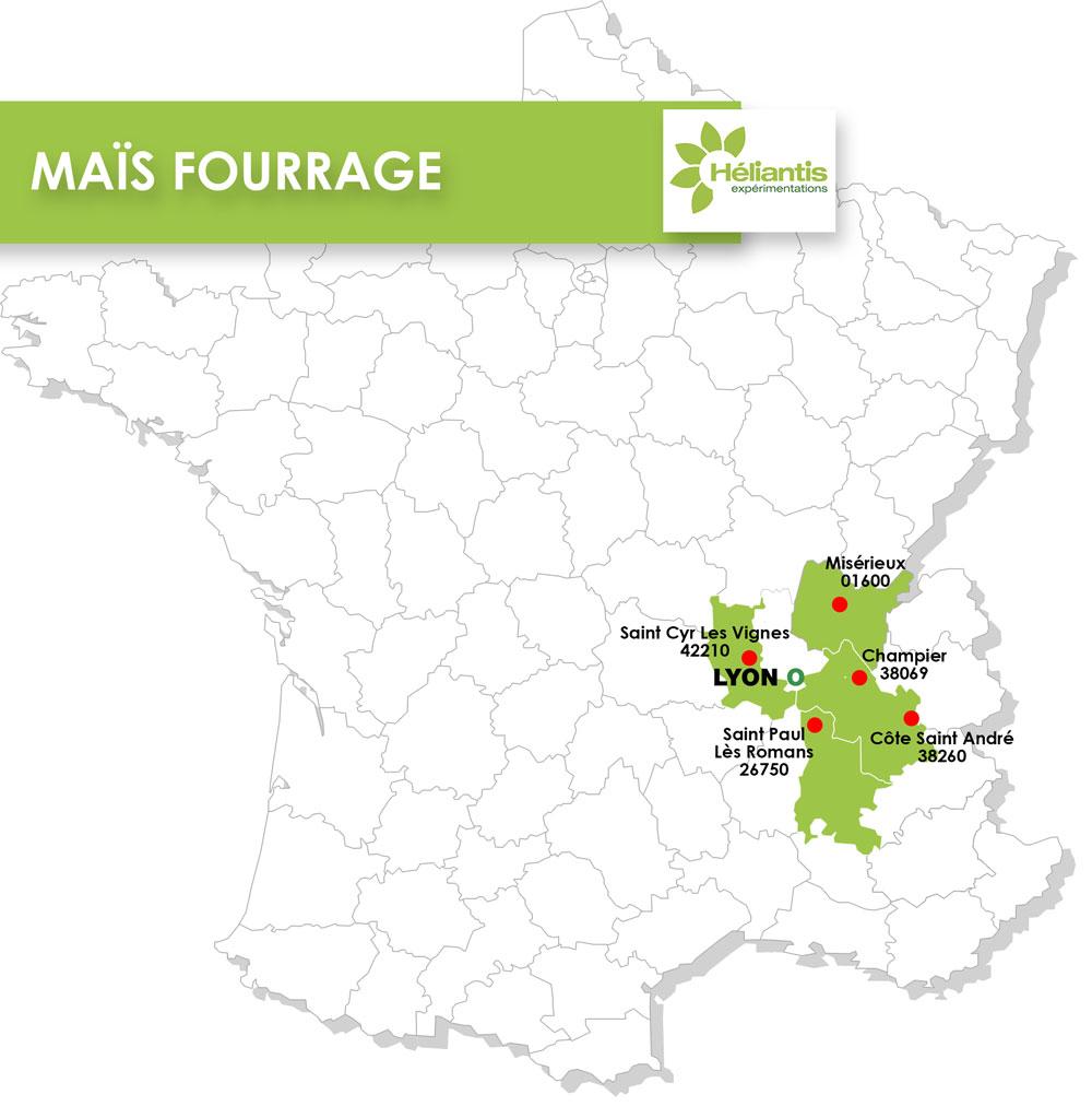 MAIS-FOURRAGE